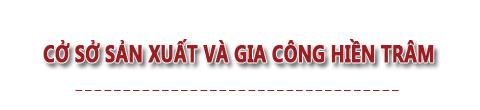 Cơ sở sản xuất túi xách Hiền Trâm